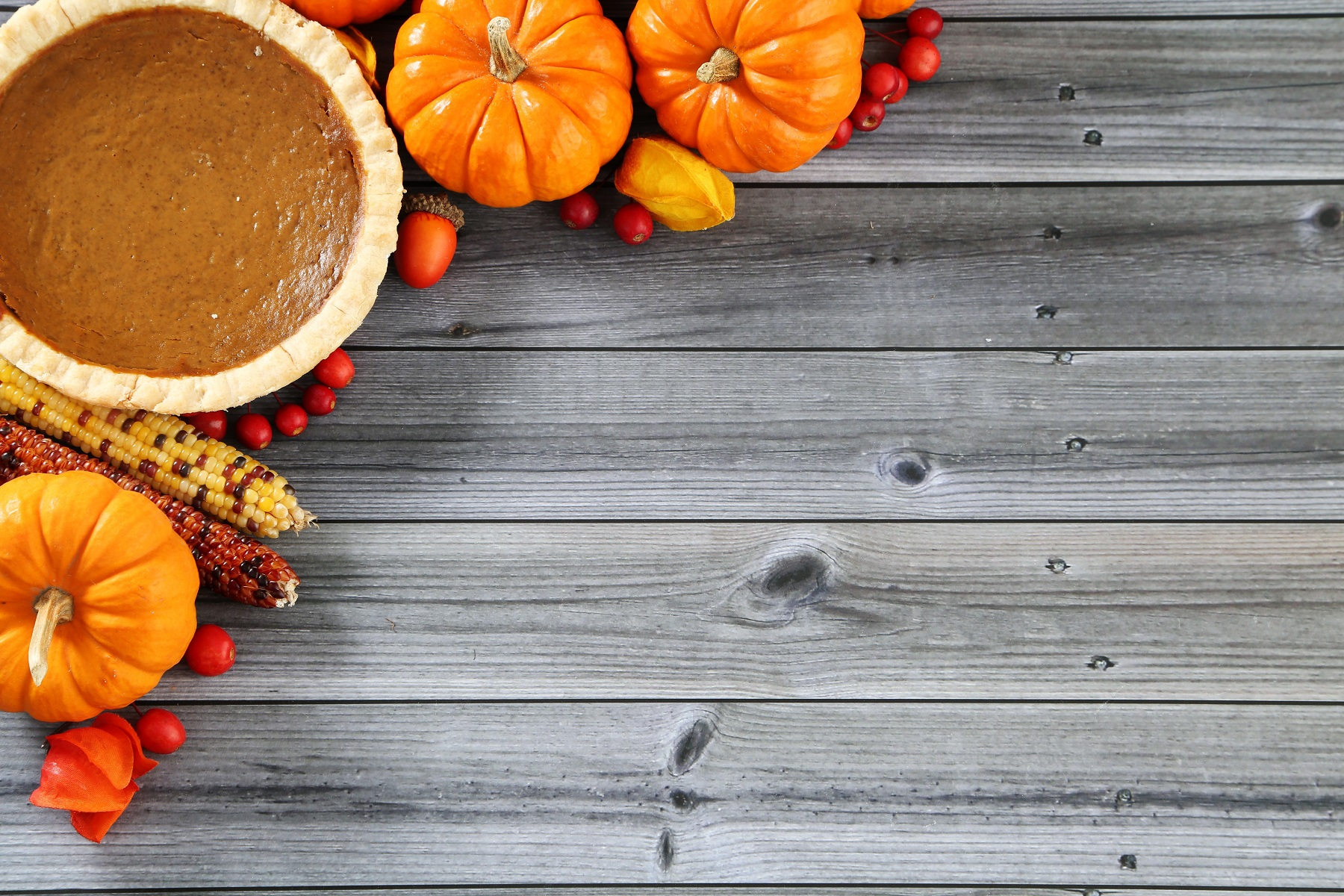 This Thanksgiving, Let's Work to Address Food Insecurity ...Thanksgiving