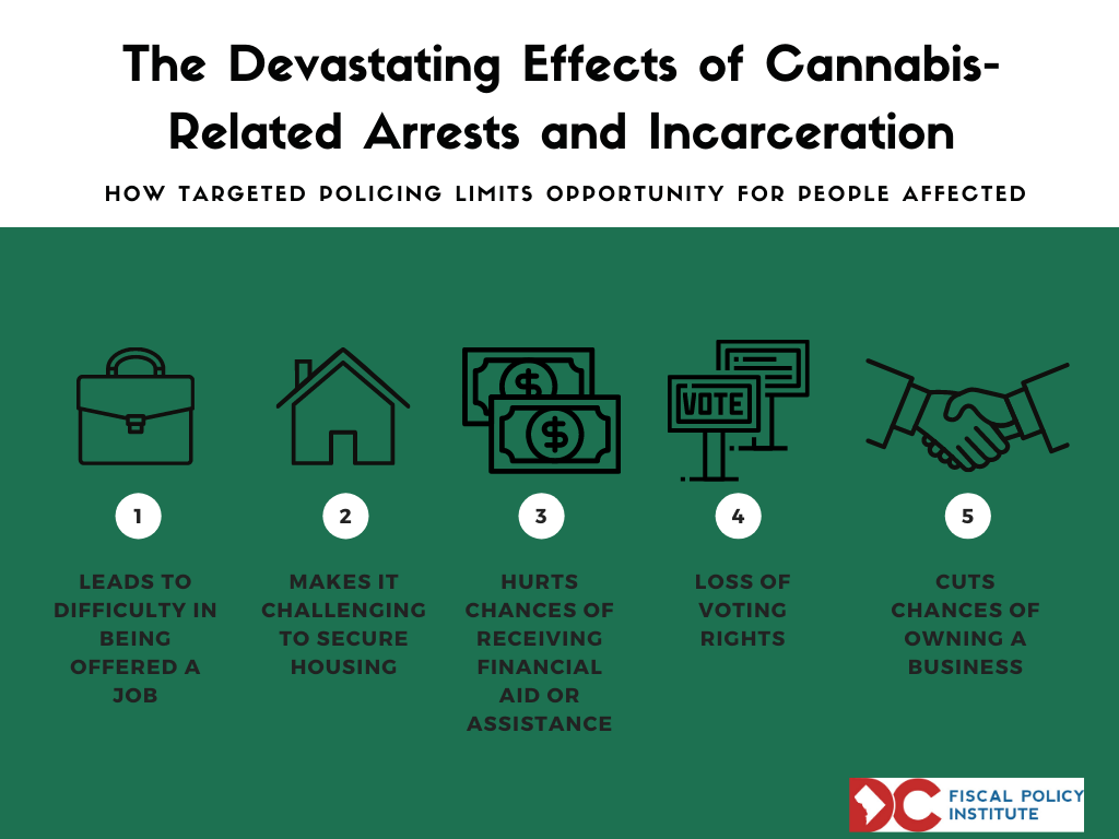"""Infographic of """"The Historic US Collateral Consequences of Cannabis-Related Arrests and Incarceration"""""""